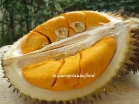 Rainforest Durian Fruit