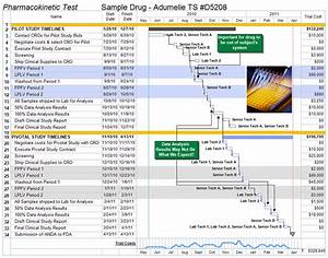free pharmaceutical project management templates aec With clinical trial template