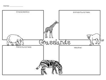 Ecosystems Worksheets & Printables By Glitter In Third Tpt