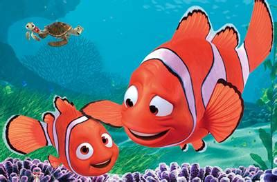 gambar ikan nemo kartun  versi aslinya jenis ikan
