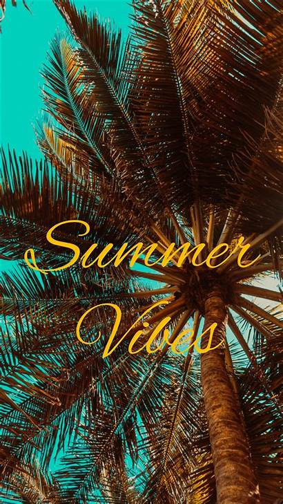 Vibes Summer Palm Vibe Background Mood Iphone