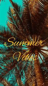 wallpaper 2160x3840 summer vibes palm mood