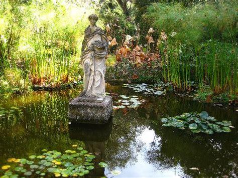petit bassin de jardin le petit bassin du jardin d eau