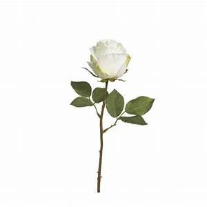 Sia Fleurs Artificielles : sia rose artificielle 49cm cr me habitat ~ Preciouscoupons.com Idées de Décoration