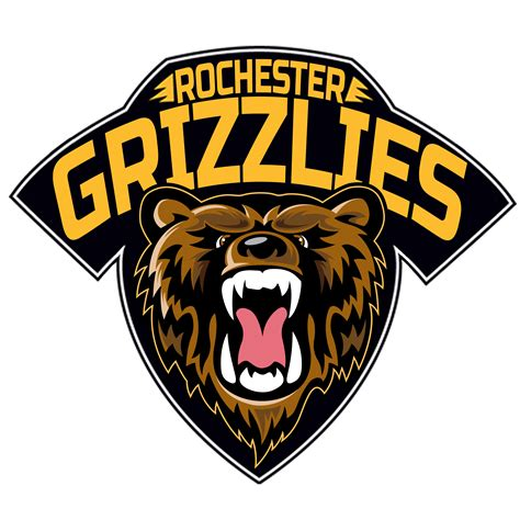austin bruins bought rochester ice hawks