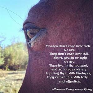 Horse Quote Inspired By Jerry Chapman Valley Horse Riding