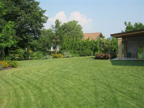 progetto giardino privato progetto giardino privato verde idea