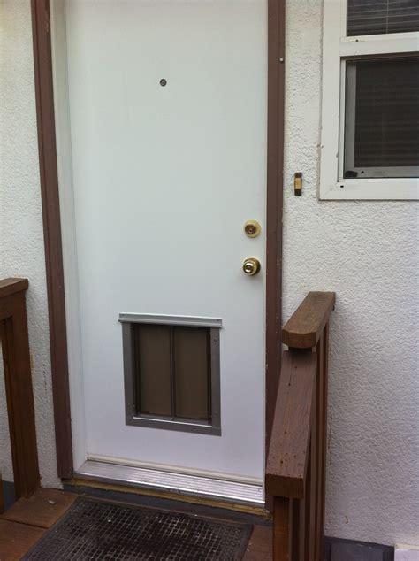 doggie door installation pet door installation locations doors cat doors