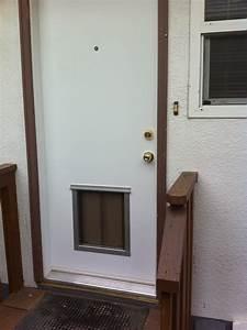 Steel doorse steel doors with pet door installed for Door with dog door installed