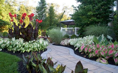 how to landscape my garden landscaping made easy with caladiums longfield gardens