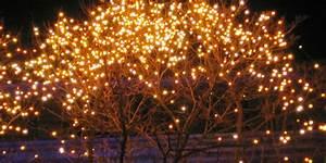 Natale: 12 consigli per le lucine degli addobbi esterni sicure greenMe