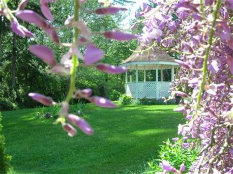 wisteria wedding gardens reviews ratings wedding