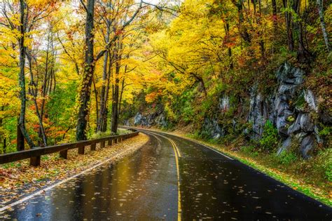 Autumn Roads Wallpapers by Autumn Road Hd Wallpaper Background Image