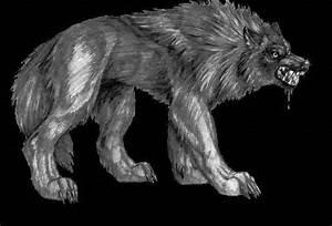 Dragons Vs Wolves | www.pixshark.com - Images Galleries ...
