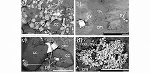 Bse U2013sem Images Of Pyrite Crystals On Fracture Surfaces   A