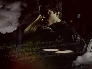Damon Salvatore - Damon Salvatore Wallpaper (25987764 ...