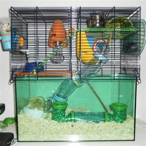 la maison dans la cagne cage parfaite pour une gerbille forum gerbille gerbille wamiz