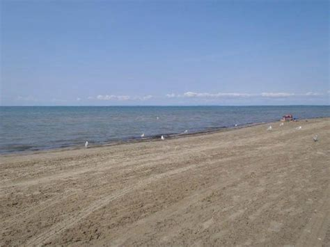 Beach Area 6  Picture Of Wasaga Beach Provincial Park
