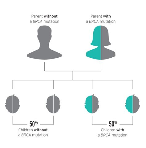 test brca brca genetic testing your family bebrcaware