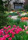 101 Front Yard Garden Ideas (Awesome PHOTOS) spring flower garden ideas