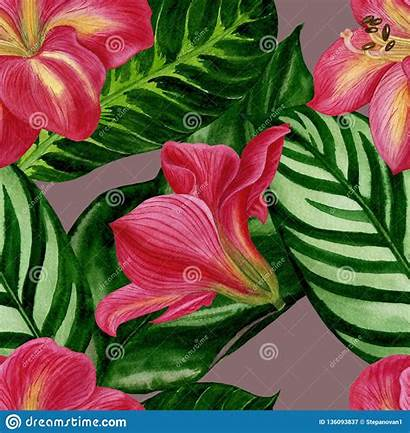 Floral Pattern Watercolour Amaryllis Seamless Flowers Fabric