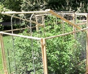Comment Tuteurer Les Tomates : bois bambou ou m tal les meilleurs tuteurs pour les tomates ~ Melissatoandfro.com Idées de Décoration