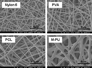 Field Emission Scanning Electron Microscopy Images Of The Electrospun