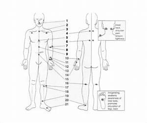 Reflexology Chart Templates  U2013 9  Free Pdf Documents