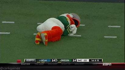 Puddles Oregon Football Mascot Farm3 Nsfw Position