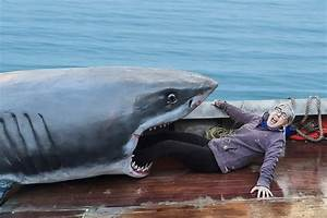 You can get your photo taken with a Jaws shark prop in ...