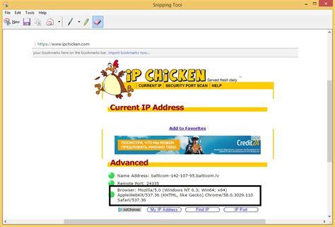change user agent bot python