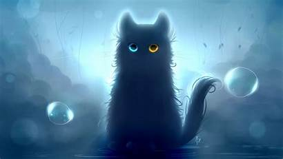 Cat Heterochromia Background 1080p Widescreen Ultrawide Monitor