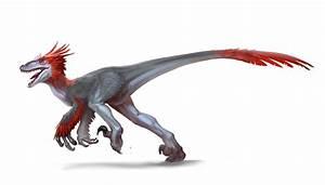 primeval deinonychus | Search Results | Dunia Photo