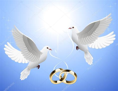 white doves holding wedding rings stock vector 169 alegria