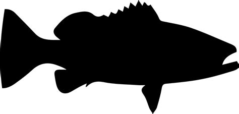 grouper svg icon fish silhouette shape file warsaw getdrawings onlinewebfonts