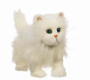 Hasbro FurReal Friends Avanti gattino gatto bianco BPM Power