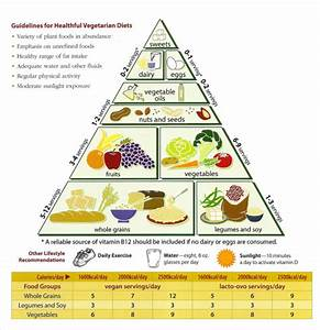 Free 6  Sample Food Calorie Chart Templates In Pdf