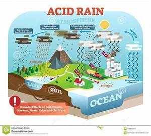 Acid Rain Cycle In Nature Ecosystem  Isometric Infographic