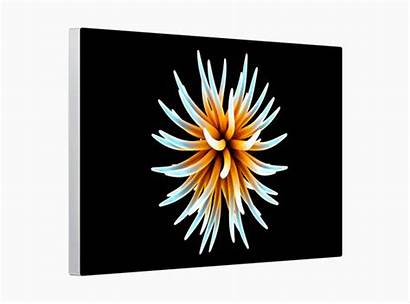 Xdr Display Pro Apple Mac Nano Texture