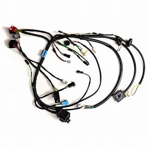 Chassis Wire Harness