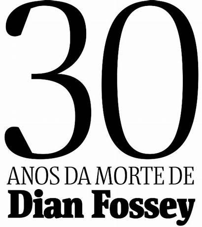 Dian Fossey Anos Um Tendo Trabalhou California