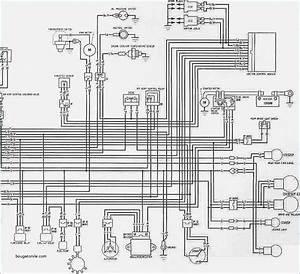 2003 Honda Vtx 1800 Wiring Diagram