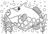 Fish Coloring Trigger Artpal Saltwater None Hall Dining sketch template