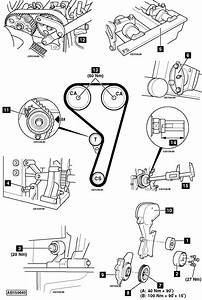 Service Manual  How To Replace Timing Belt On A 2008 Mini Cooper