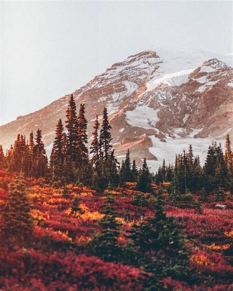 Fall Backgrounds Computer Aesthetic by Winter Aesthetic
