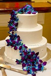 78 best images about Purple And Blue Orchid Wedding on ...