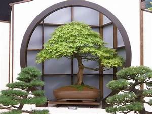 Jardin Japonais Interieur : jardin d int rieur le guide complet pour un jardin r ussi ~ Dallasstarsshop.com Idées de Décoration
