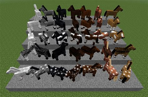 minecraft horse types horses different chart breeding mods gamepedia cheval cavalos chevaux couleurs cores pe wiki xbox