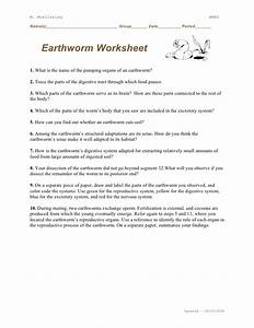 Printables  Earthworm Dissection Worksheet  Messygracebook