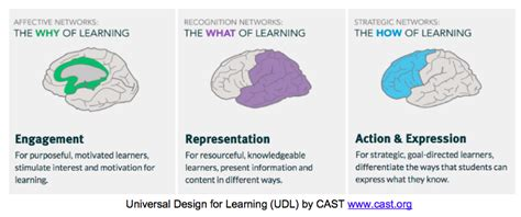 universal design for learning udl starts with the why of learning rethinking learning
